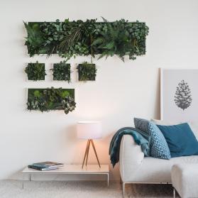 StyleGreen Pflanzenbild aus Moos und Farnen. Echte Pflanzen, natürlich konserviert, ohne Pflegeaufwand