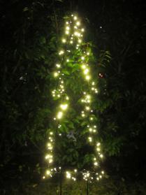 Weihnachtsbeleuchtung außen: Tannen-Silhouette LED