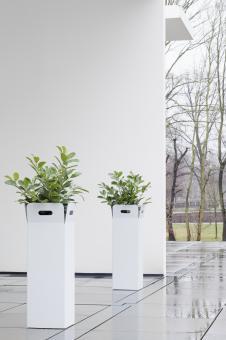 """Pflanzkübel """"Box"""" – Design einer Papiertüte"""
