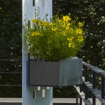Flowerbox, passend zu Separo-Sichtschutz-Elementen
