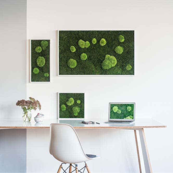 garten im quadrat stylegreen moosbild aus wald und kugel moos echtes moos kologisch. Black Bedroom Furniture Sets. Home Design Ideas