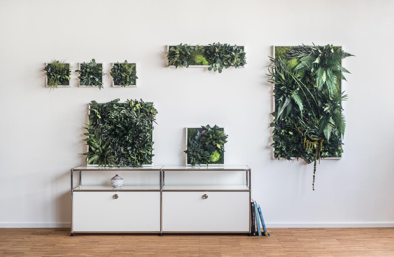 Stylegreen pflanzenbild aus moos und farnen besonders üppig typ dschungel echte pflanzen natürlich konserviert ohne pflegeaufwand